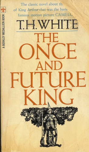 a comparison of ideal chivalry and reality in the once and the future king by th white The code of chivalry in the once and future king - the code of chivalry th white, the once and future king when in reality he knows nothing and his.