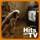 ヒッツ・オンTV 2004