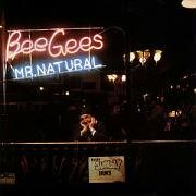 Bee Gees - Mr. Natural - Zortam Music