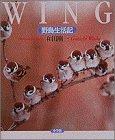 WING―野鳥生活記