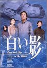 DVD白い影(1)