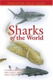 Sharks of the World (Princeton Field Guides), written by Leonard Compagno / Marc Dando / Sarah Fowler