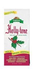 Holly Tone