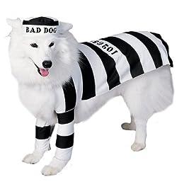 Prisoner Dog Halloween Costume