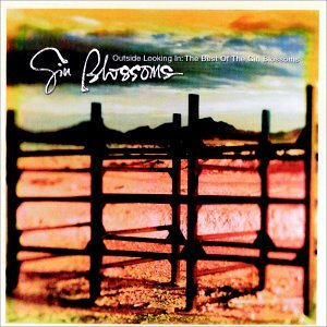 Gin Blossoms - Outside Looking In  The Best Of Gin Blossoms - Zortam Music