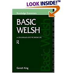 Basic Welsh: A Grammar and Workbook