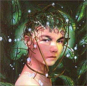 Björk - Bachelorette - Zortam Music