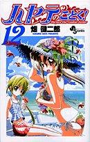 ハヤテのごとく! 12 (12)