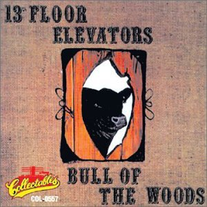 13th Floor Elevators - Bull of the Woods - Zortam Music