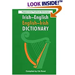Irish-English/English-Irish Practical Dictionary