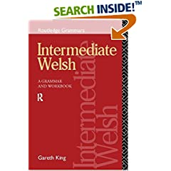 Intermediate Welsh: A Grammar and Workbook