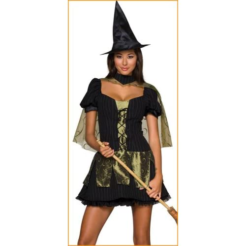 Sexy Halloween Costumes Sexy Wicked Witch Costume
