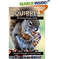 Squirrel Feeder and Guide