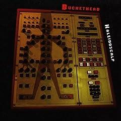 Kaleidoscalp - Buckethead
