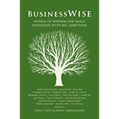 BusinessWise book on Amazon