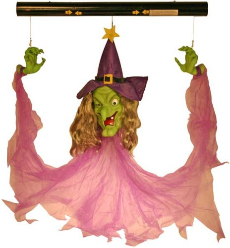 Gemmy 27488 Motion Activated Floating Witch with Sound and Light-Up Eyes