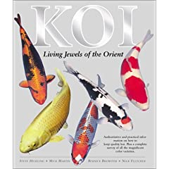 Koi Carp - Koi: Living Jewels of the Orient (Hardcover)