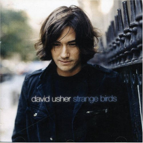 David Usher - Strange Birds - Zortam Music