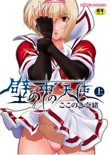 壁の中の天使 上 (1) (二次元ドリームコミックス 91)