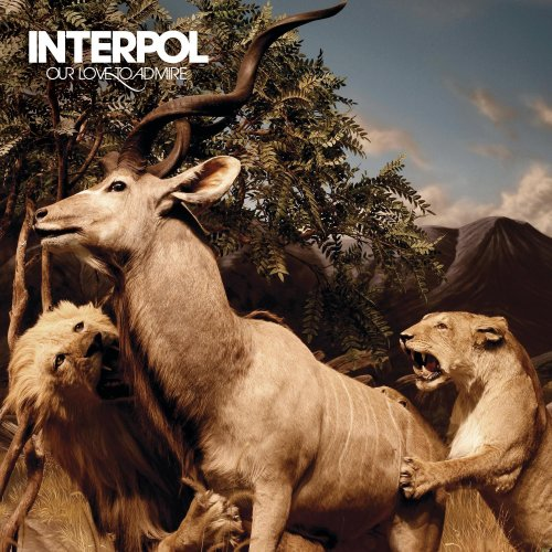 Interpol - Our Love To Admire - Zortam Music