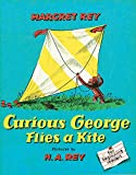 Curious George Flies a Kite (Curious George)