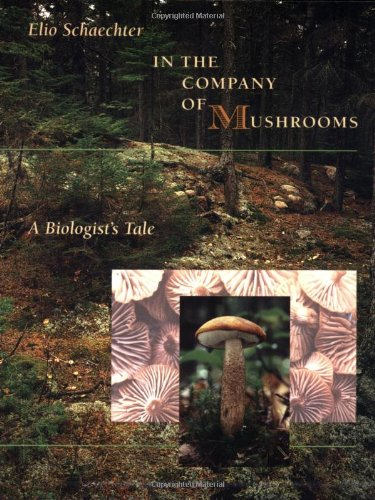 : In the Company of Mushrooms