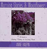Morning Glory and Moonflowers