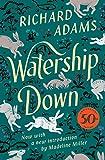 Colina de Watership
