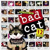 Books : Bad Cat Wall Calendar 2007 - ThingsYourSoul.com