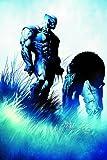 Wolverine: Origins & Endings (Wolverine)