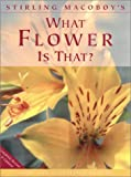 What Flower Is That? by Stirling MacOboy (Hardcover - Sep 2000)