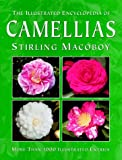 The Illustrated Encyclopedia of Camellias by Stirling Macoboy (Hardcover - Mar 20, 1998)