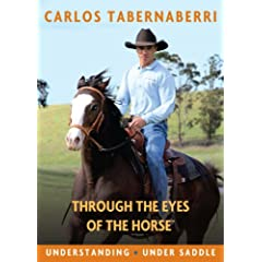 Understanding - Under Saddle