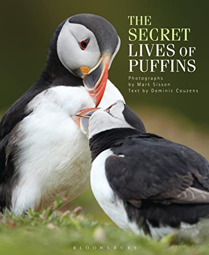 The Secret Lives of Puffins-Dominic Couzens