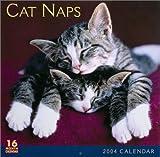 Cat Naps 2004 Calendar