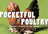 Pocketful of Poultry