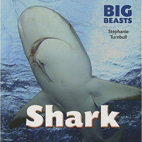 Shark (Big Beasts) - Paperback NEW Stephanie Turnb 2015-09