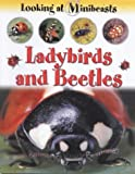 Ladybirds and Beetles (Looking at Minibeasts)