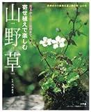 寄せ植えで楽しむ山野草―苔玉からミニ盆栽まで