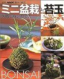 ミニ盆栽と苔玉—失敗しない育て方