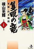 隻眼の竜—軍師・山本勘助 (1)