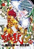 聖闘士星矢EPISODE・G 11 (11)