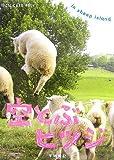 空とぶヒツジ in sheep island
