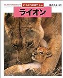 どうぶつの赤ちゃん ライオン