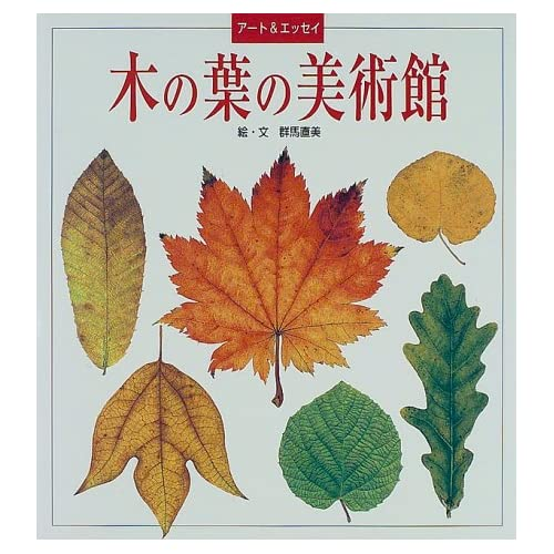 木の葉の美術館