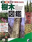 樹木図鑑―葉・実・樹皮で確実にわかる
