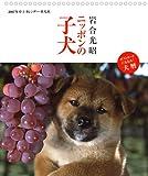 2007年卓上カレンダー 岩合光昭 ニッポンの子犬