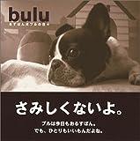 bulu  るすばん犬ブルの日々