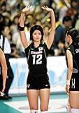 全日本バレーボール(女子) 2006年度 カレンダー