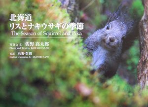 北海道 ナキウサギ